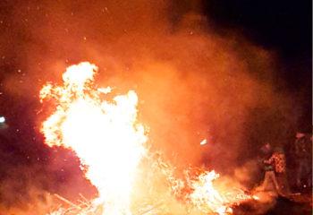 weihnachtsbaumaktion-baeume-brennen